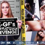 X-GF's Dumping Revenge